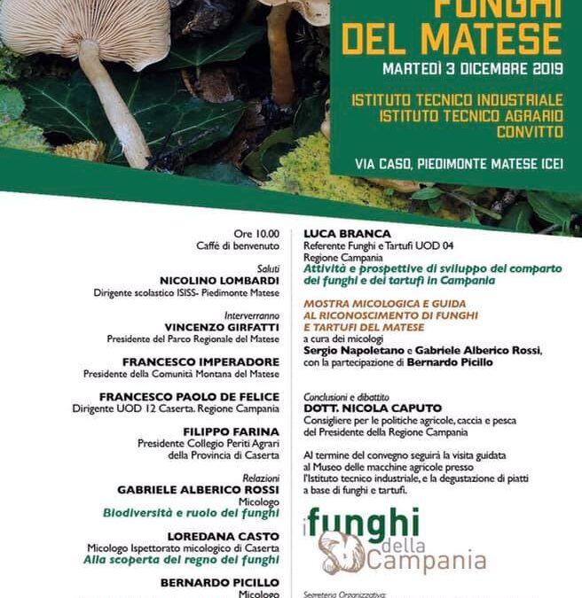 Workshop Funghi del Matese